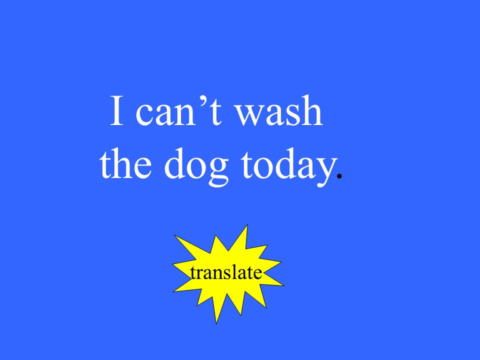 I cant wash the dog today. translate