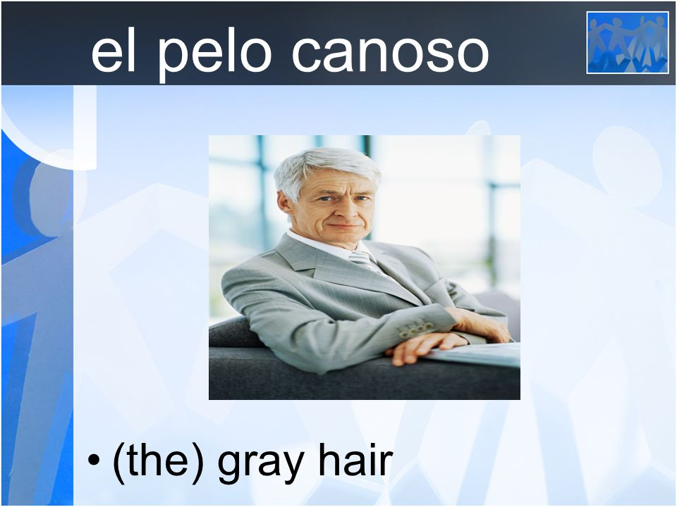 el pelo canoso (the) gray hair