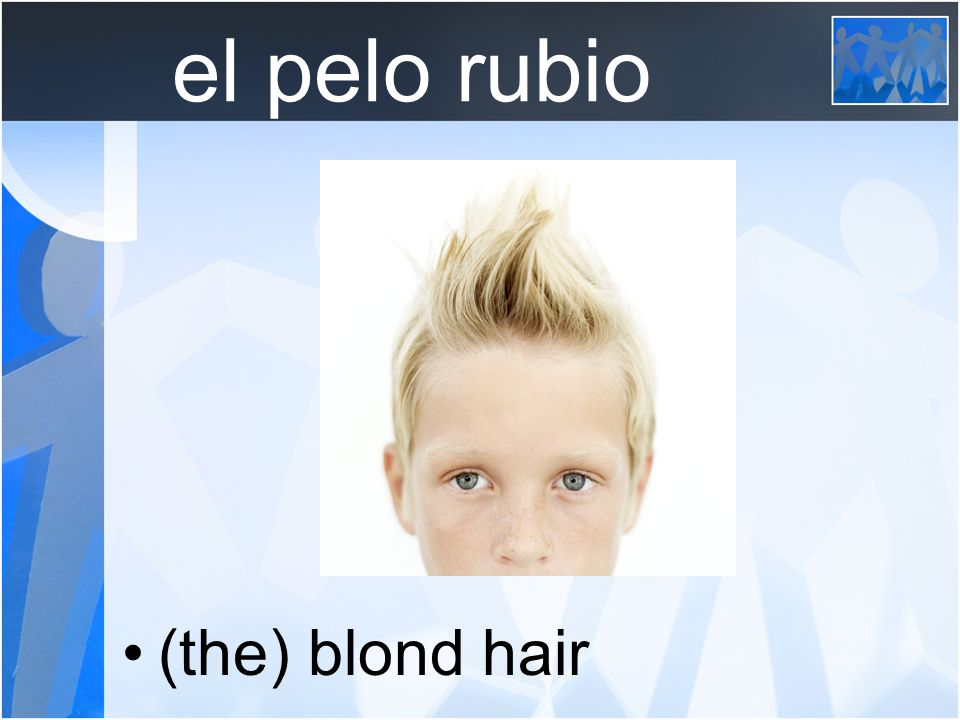 el pelo rubio (the) blond hair