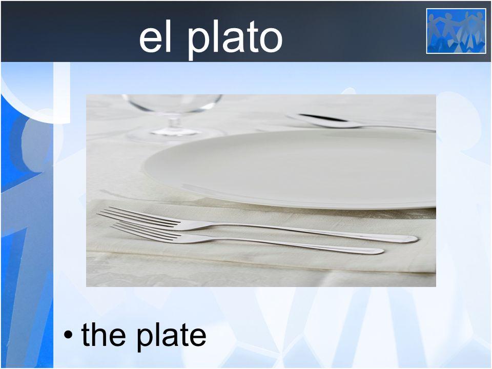 el plato the plate