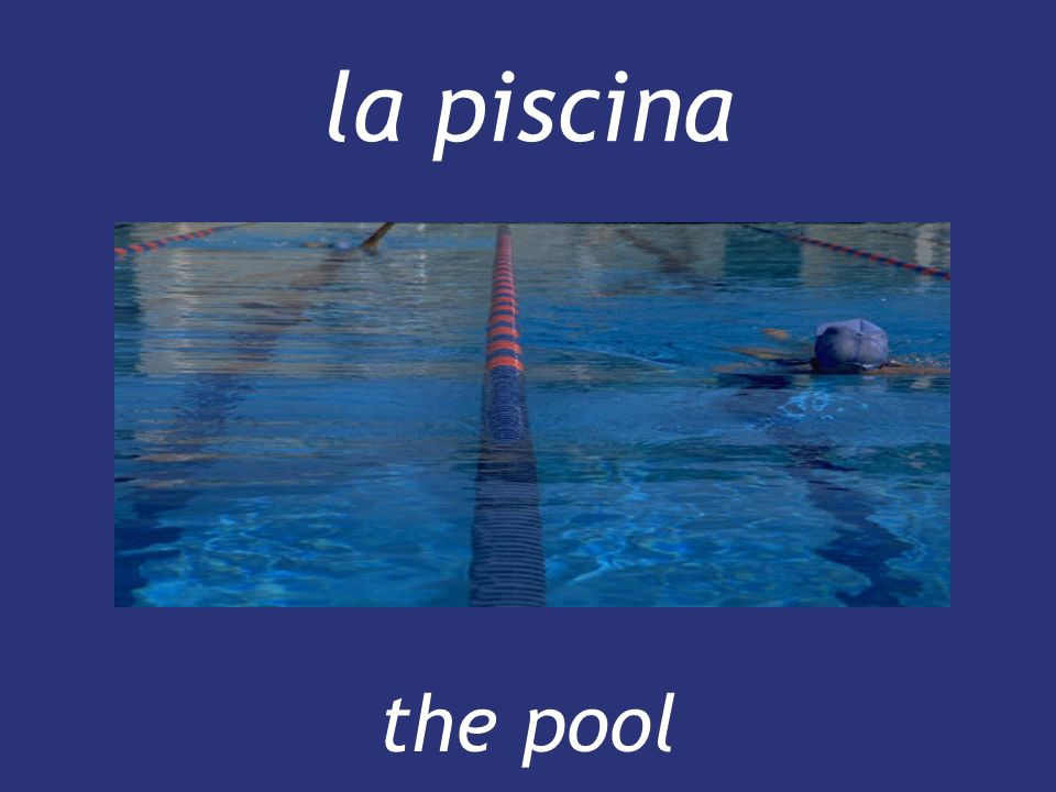 la piscina the pool the pool