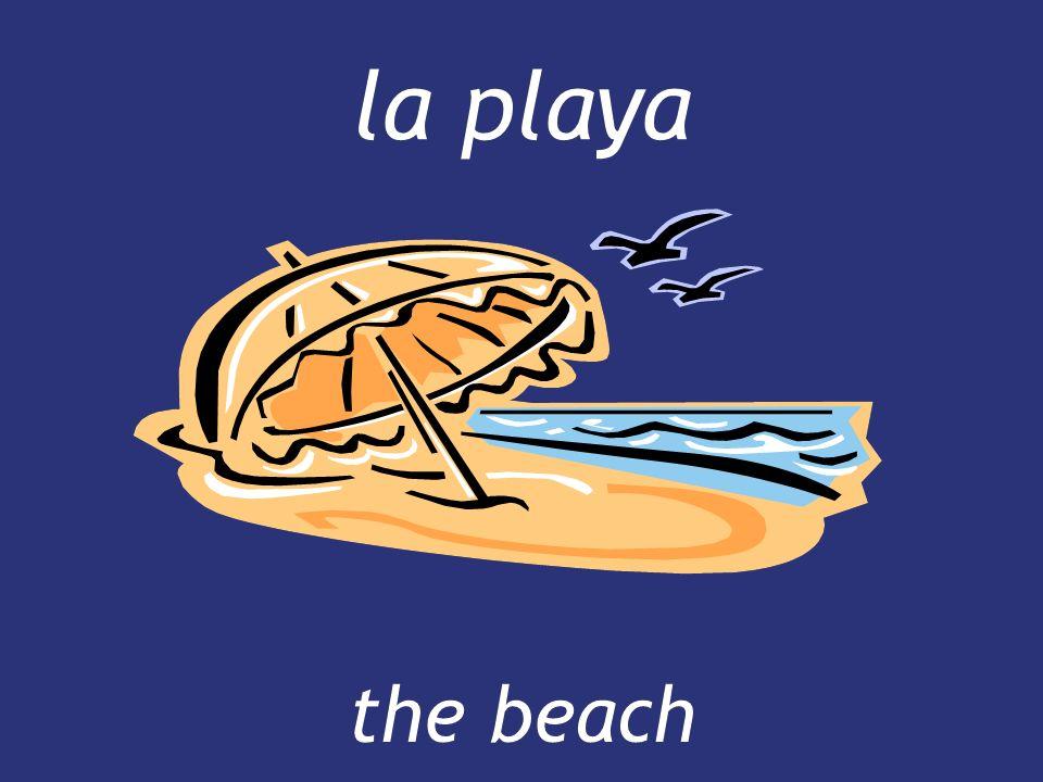 la playa the beach the beach