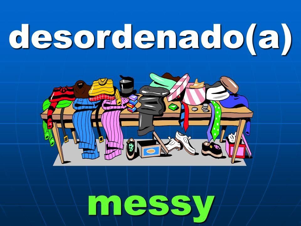 desordenado(a) messy