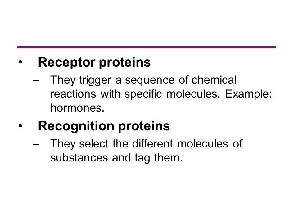 Receptor proteins –They trigger a sequence of chemical reactions with specific molecules.