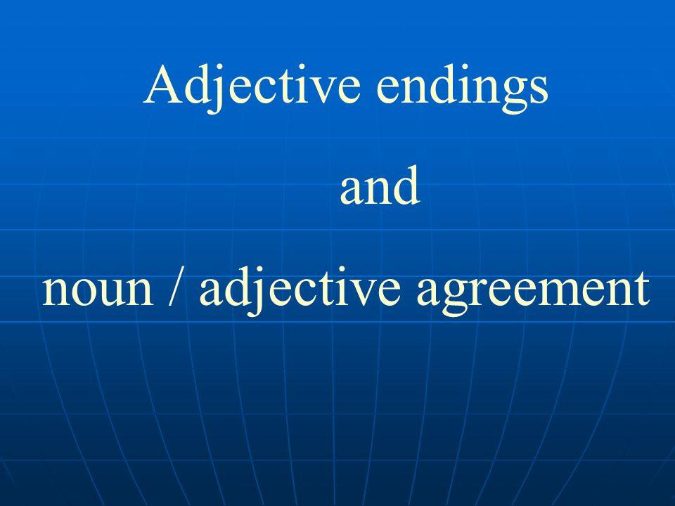 Adjective endings and noun / adjective agreement