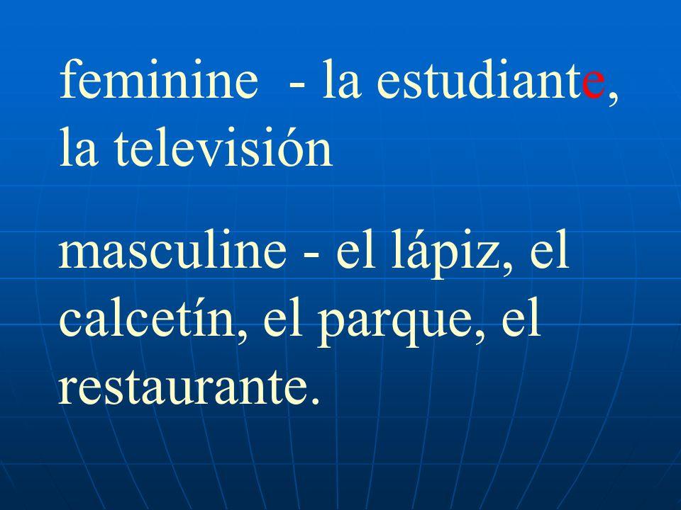 feminine - la estudiante, la televisión masculine - el lápiz, el calcetín, el parque, el restaurante.