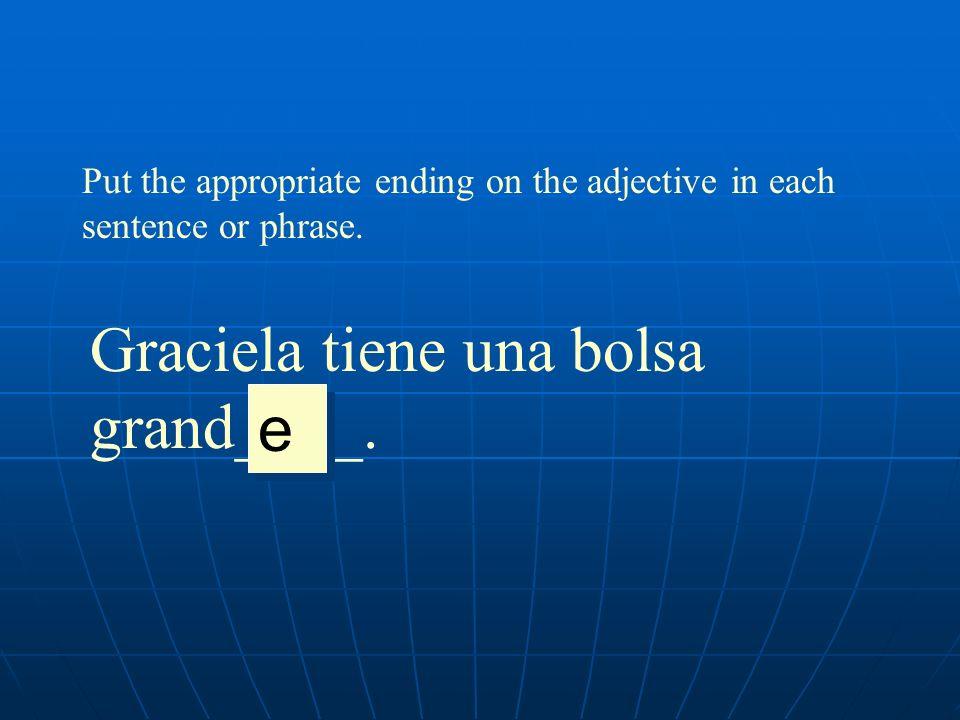 Put the appropriate ending on the adjective in each sentence or phrase. Graciela tiene una bolsa grand____. e e