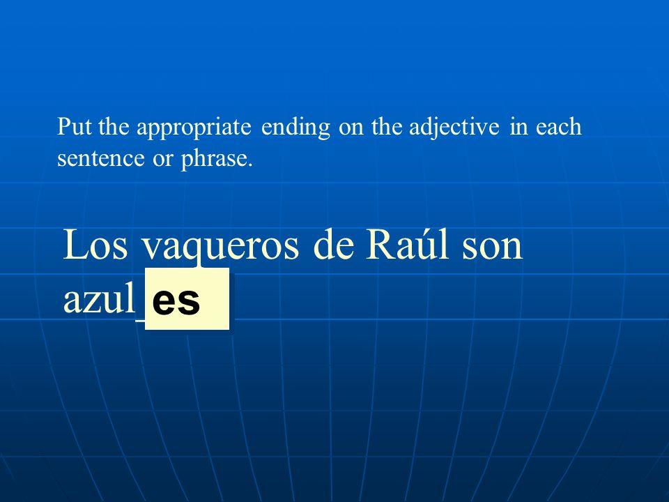 Put the appropriate ending on the adjective in each sentence or phrase. Los vaqueros de Raúl son azul____. es