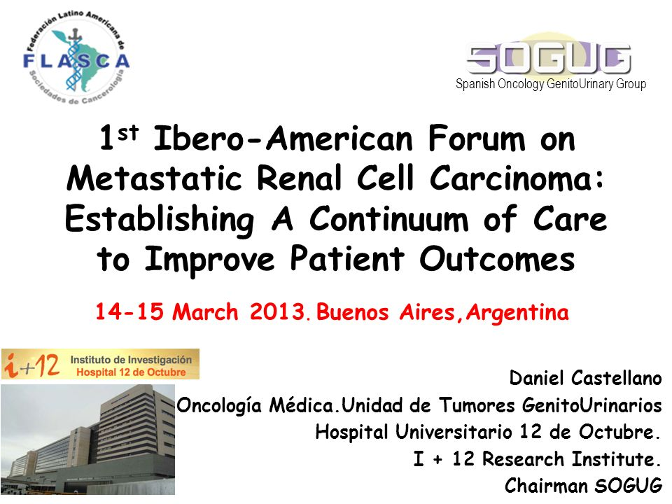 1 st Ibero-American Forum on Metastatic Renal Cell Carcinoma: Establishing A Continuum of Care to Improve Patient Outcomes Daniel Castellano Oncología