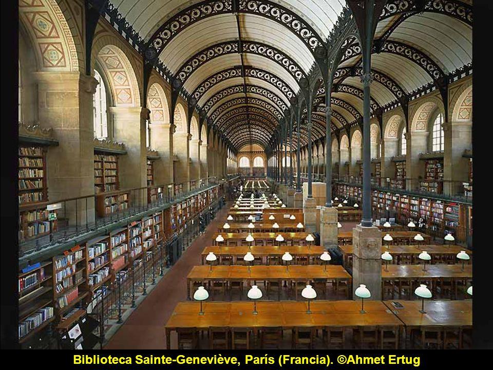 Biblioteca di bella arti, Milán (Italia). ©Ahmet Ertug