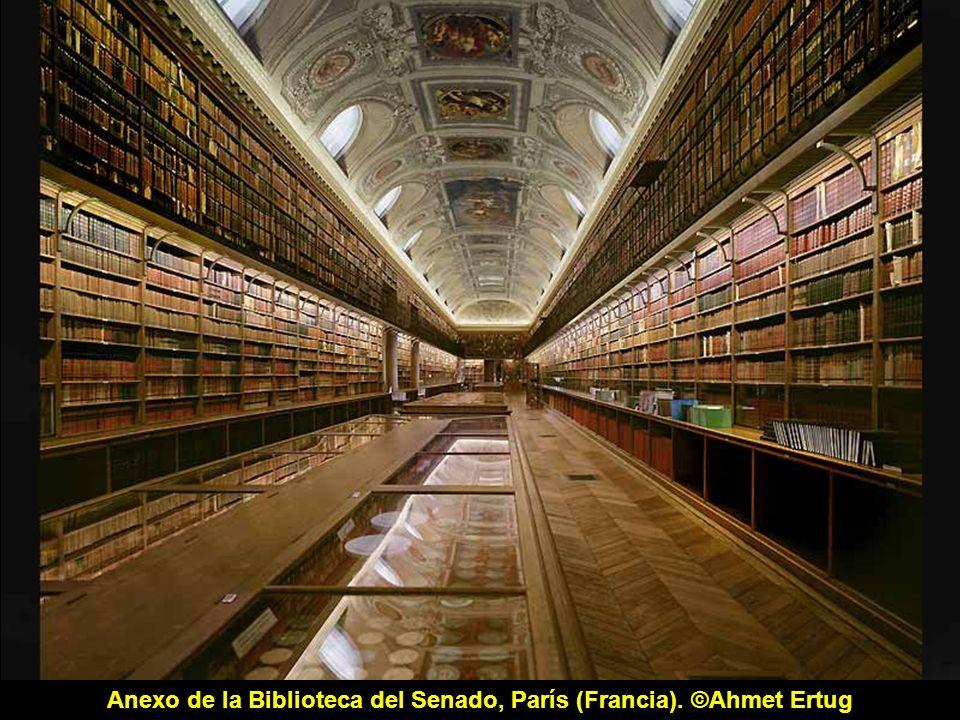 Biblioteca Nacional de Francia, site Richelieu, sala oval, París (Francia), 2008.