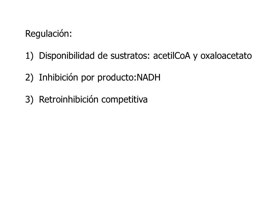 Regulación: 1)Disponibilidad de sustratos: acetilCoA y oxaloacetato 2)Inhibición por producto:NADH 3)Retroinhibición competitiva