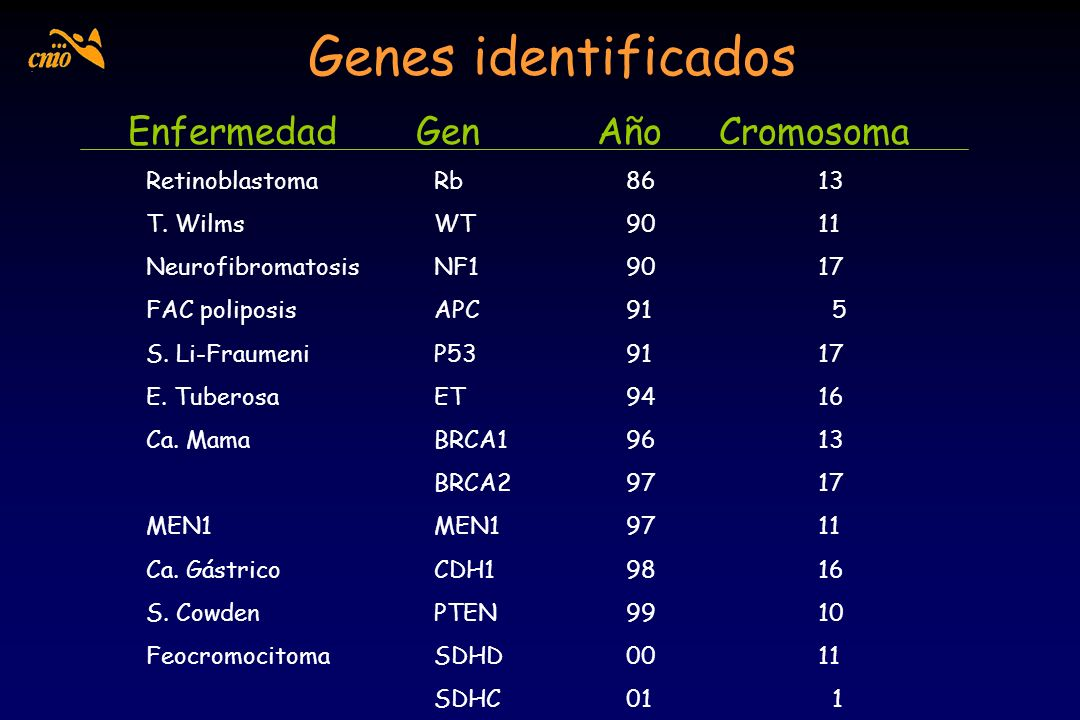 Genes identificados Enfermedad Gen Año Cromosoma RetinoblastomaRb8613 T. WilmsWT9011 NeurofibromatosisNF19017 FAC poliposisAPC91 5 S. Li-FraumeniP5391