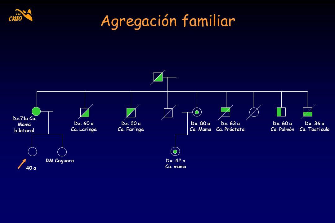Agregación familiar 40 a Dx.71a Ca. Mama bilateral Dx. 60 a Ca. Laringe Dx. 20 a Ca. Faringe Dx. 80 a Ca. Mama Dx. 42 a Ca. mama Dx. 63 a Ca. Próstata