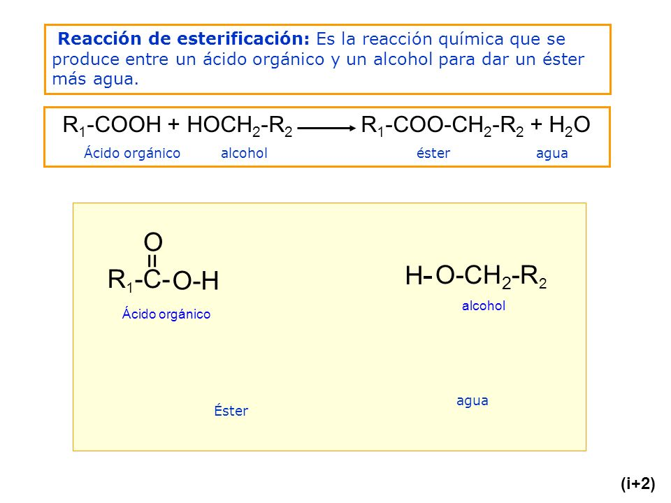 Reacción de esterificación: Es la reacción química que se produce entre un ácido orgánico y un alcohol para dar un éster más agua. R 1 -C- = O O-H H-