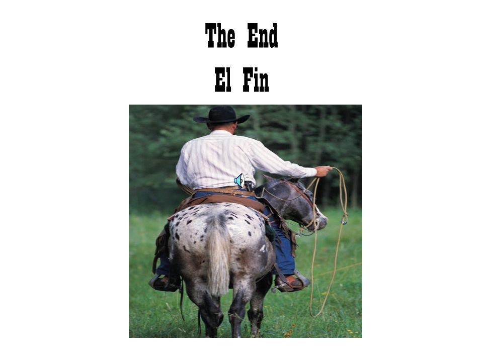 Cowboys and cowgirls wear these: Vaqueros y vaqueras usan estos: hat sombrero Boots botas Belt Cincho o cinto Jeans Pantalones de mezclilla