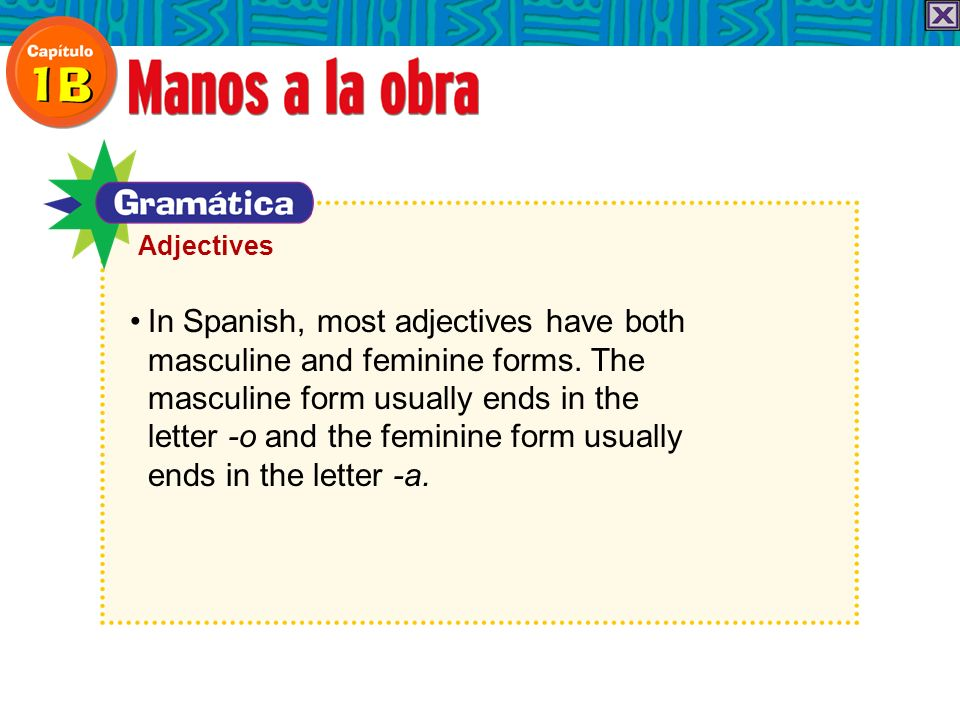 In Spanish, most adjectives have both masculine and feminine forms. The masculine form usually ends in the letter -o and the feminine form usually end