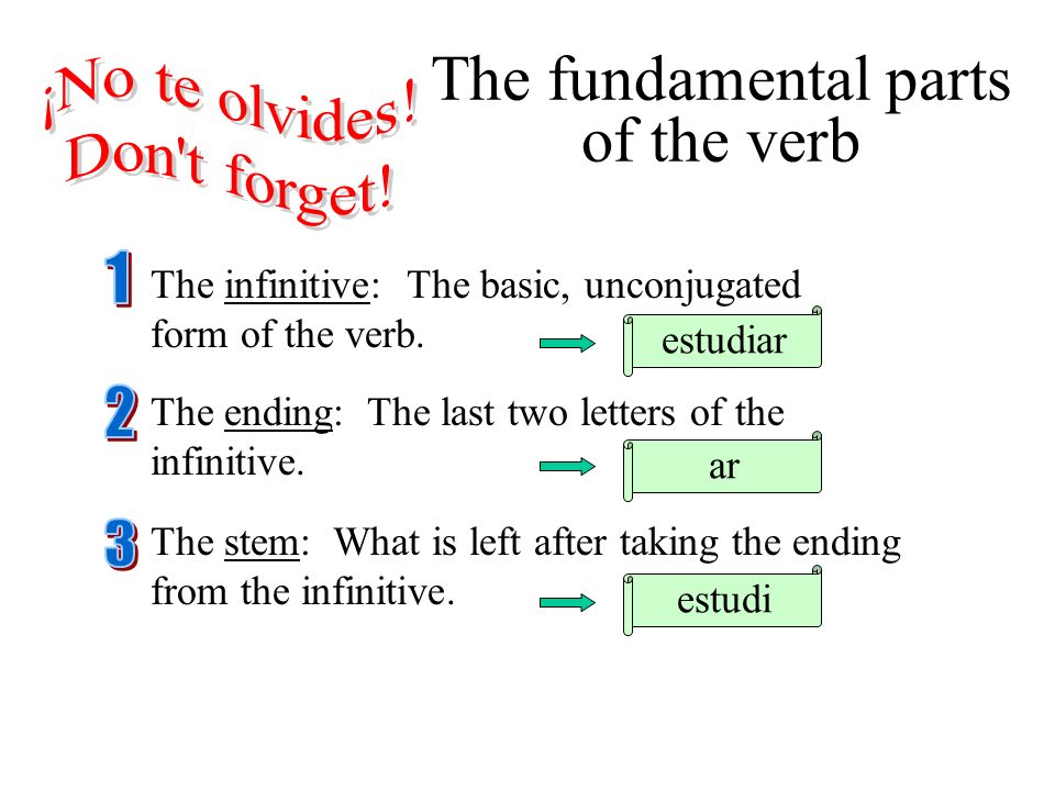 The infinitive: The basic, unconjugated form of the verb. estudiar The fundamental parts of the verb The ending: The last two letters of the infinitiv