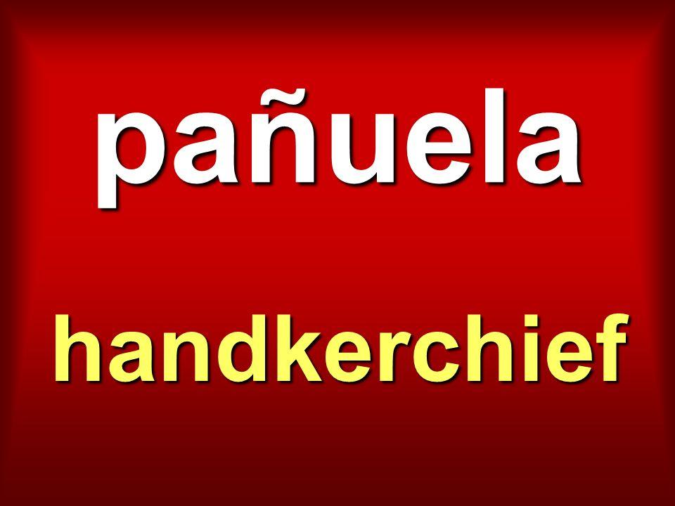 pañuela handkerchief