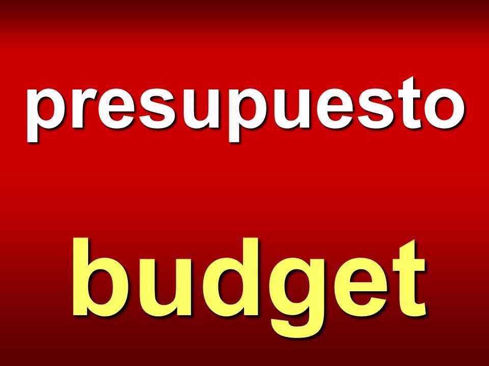 presupuesto budget