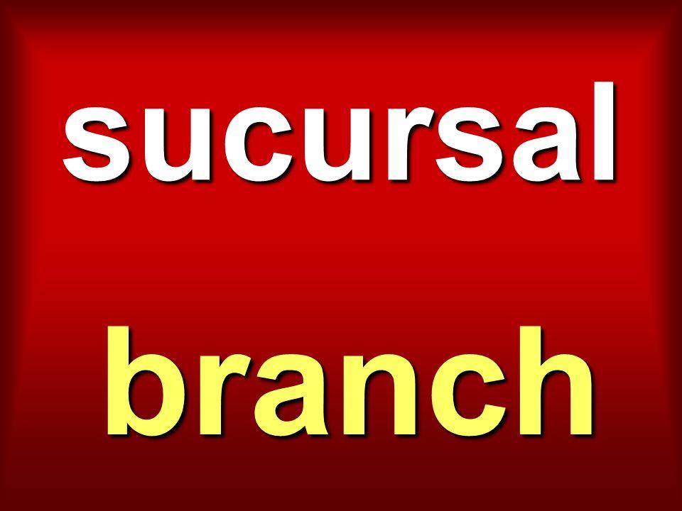 sucursal branch