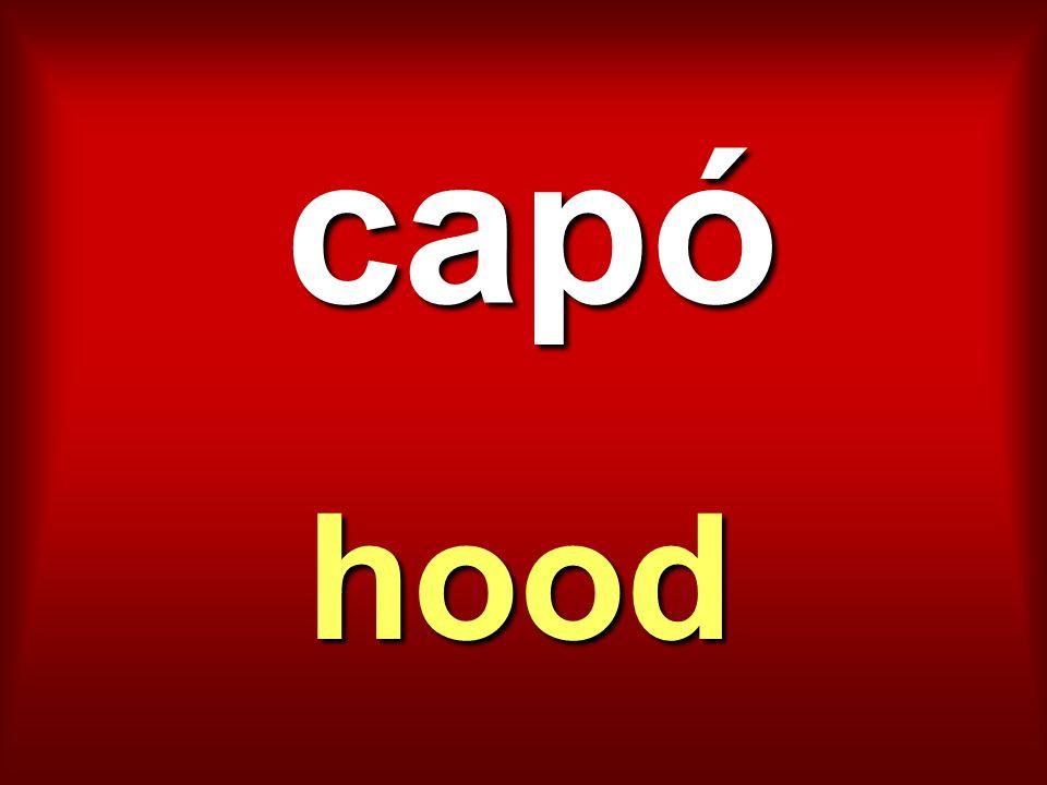 capó hood