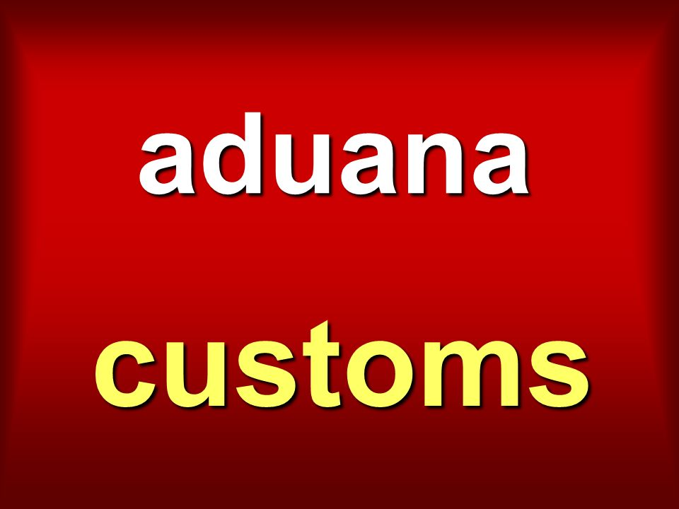 aduana customs
