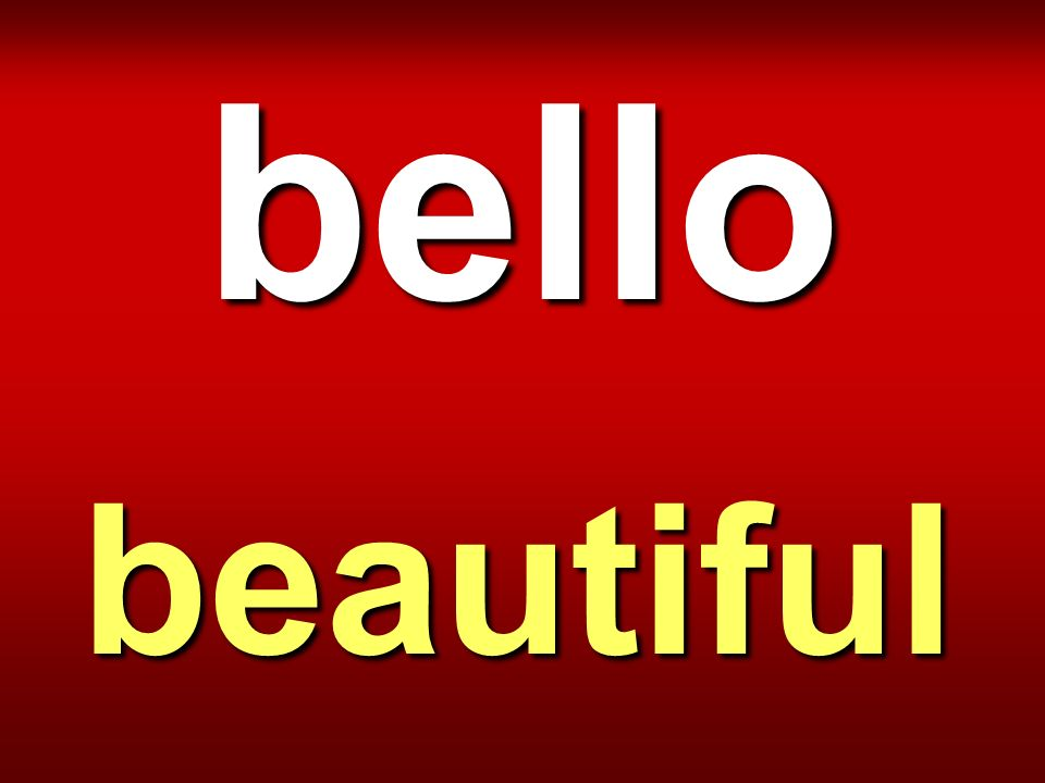 bello beautiful