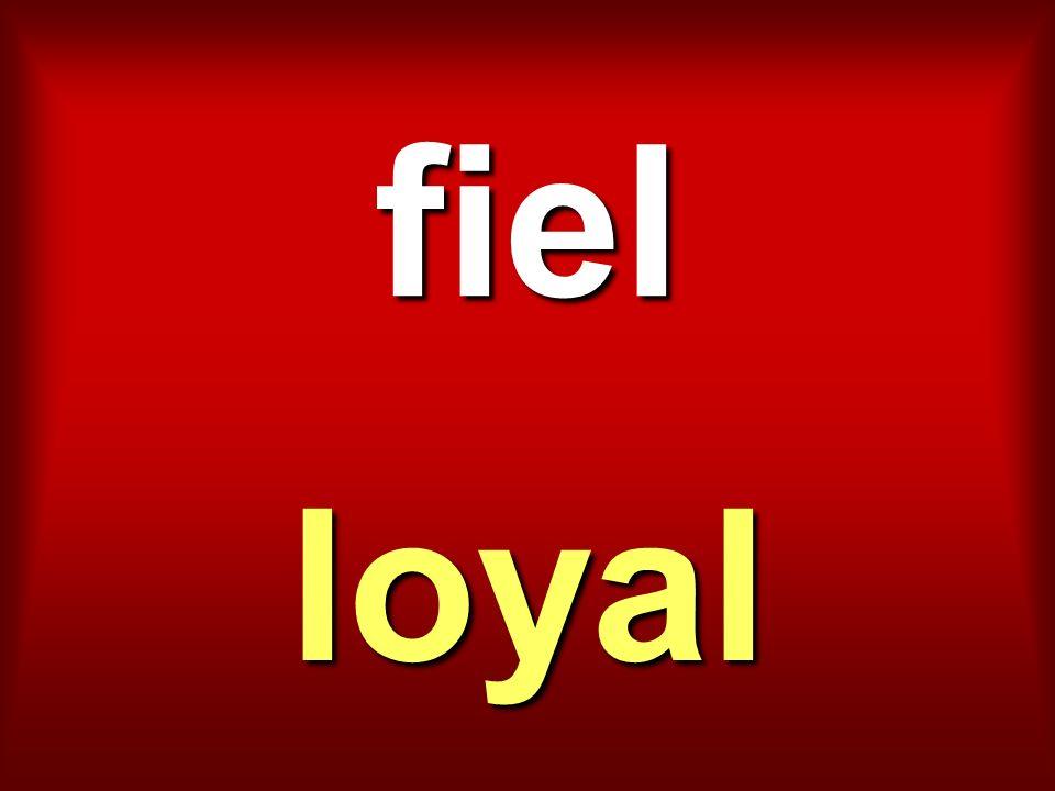 fiel loyal