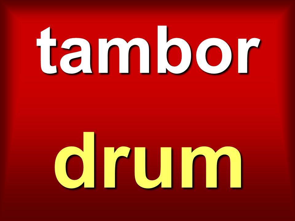 tambor drum