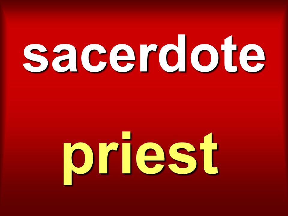 sacerdote priest