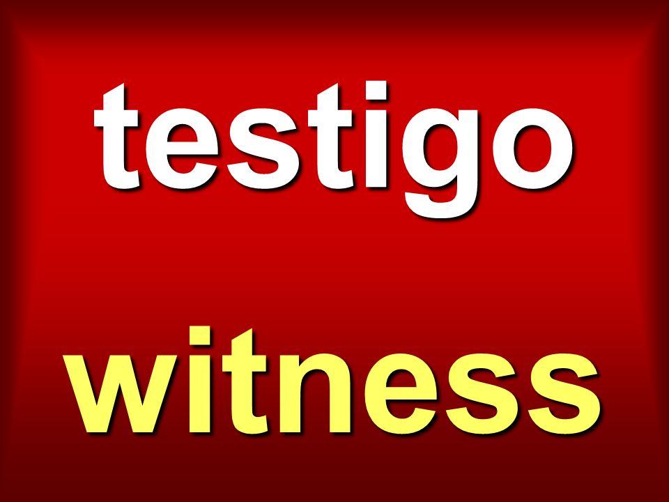 testigo witness