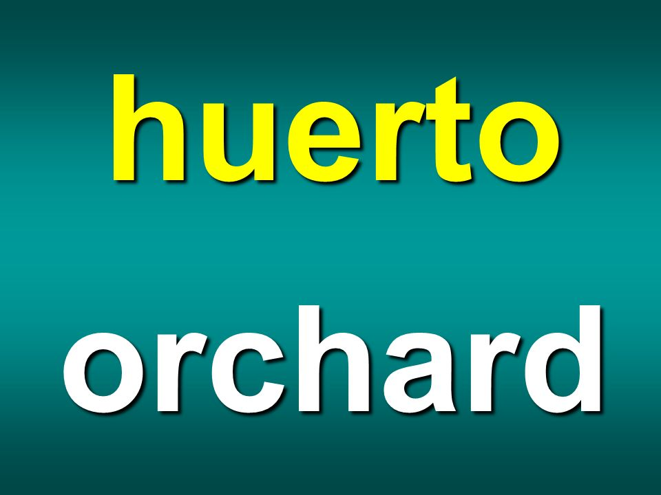 huerto orchard