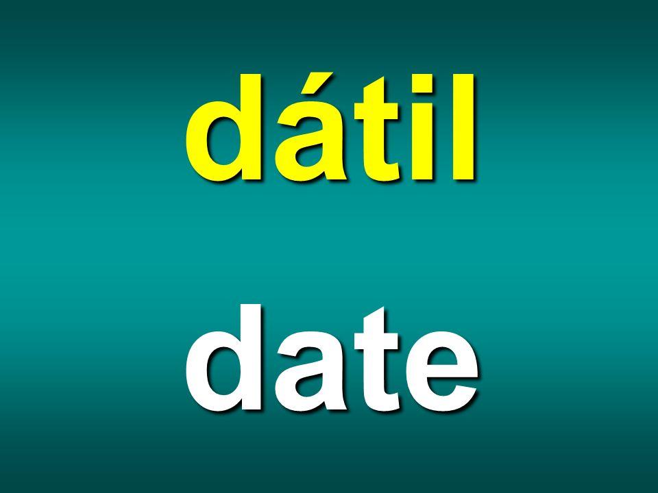 dátil date