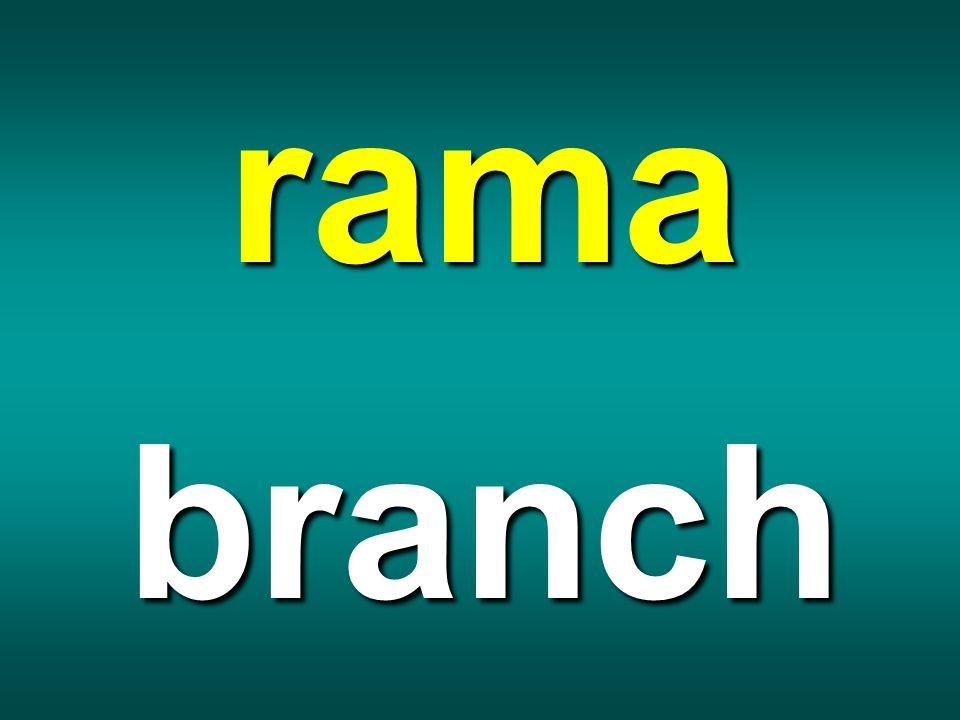 rama branch