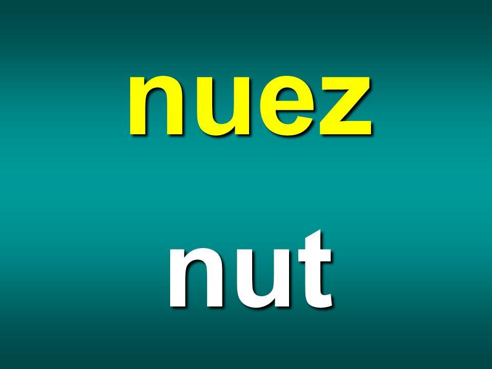 nuez nut