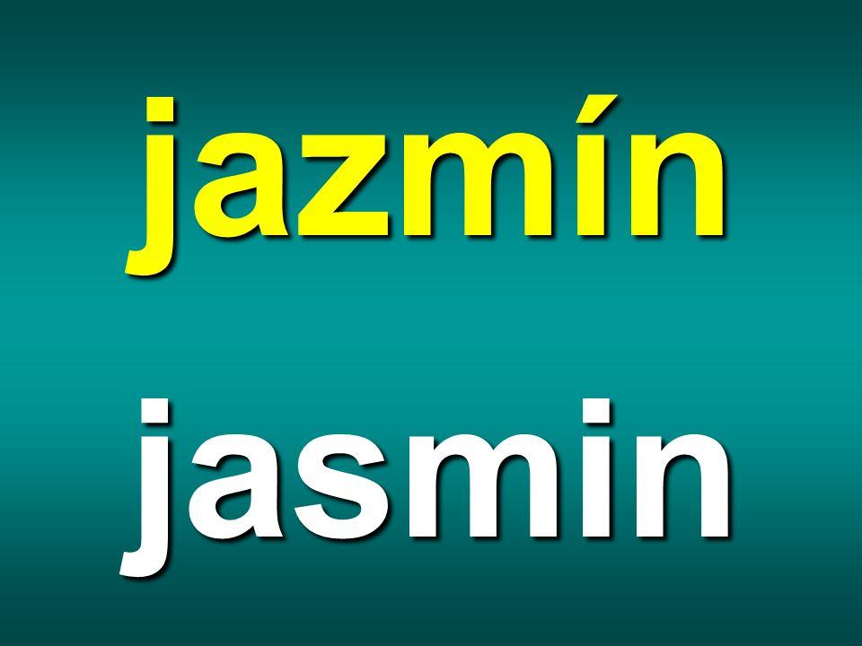 jazmín jasmin