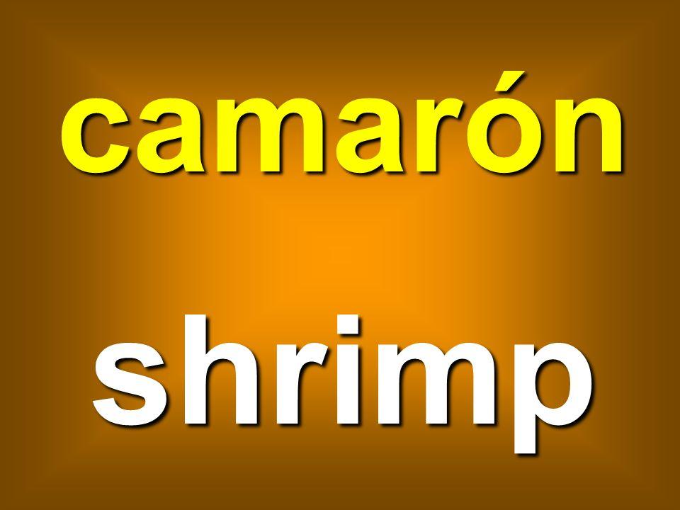 camarón shrimp