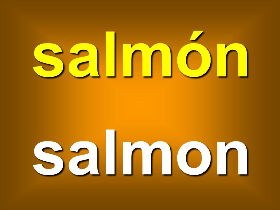 salmón salmon