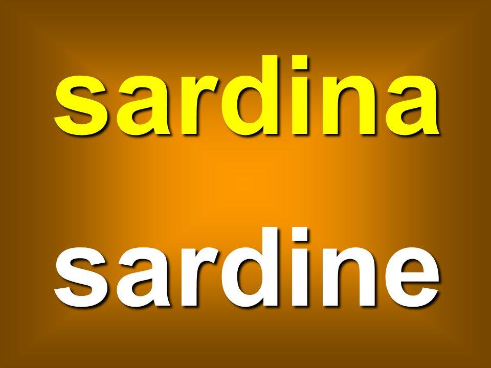 sardina sardine
