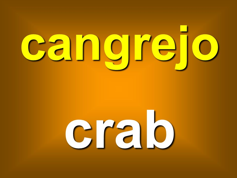 cangrejo crab