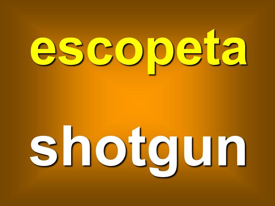 escopeta shotgun