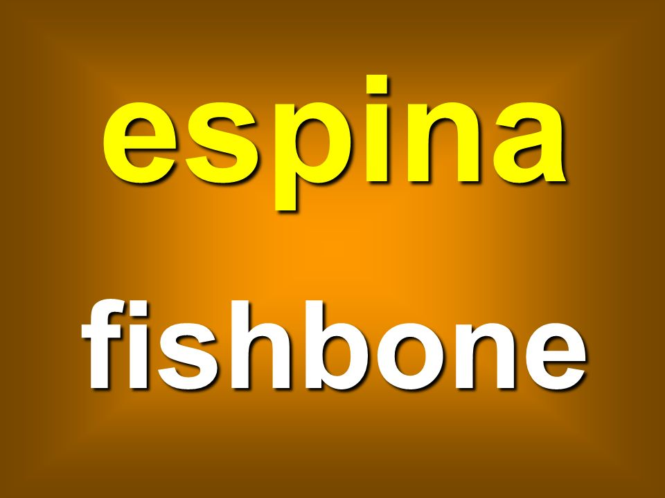 espina fishbone