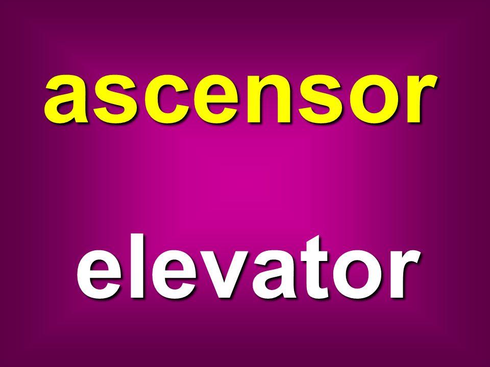 ascensor elevator