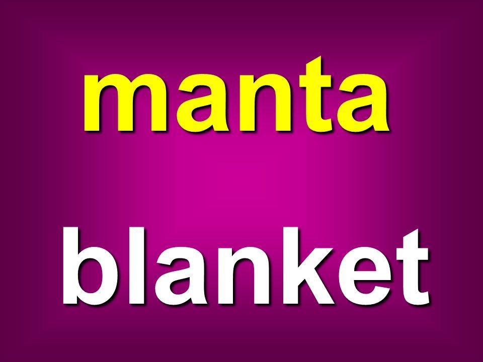 manta blanket