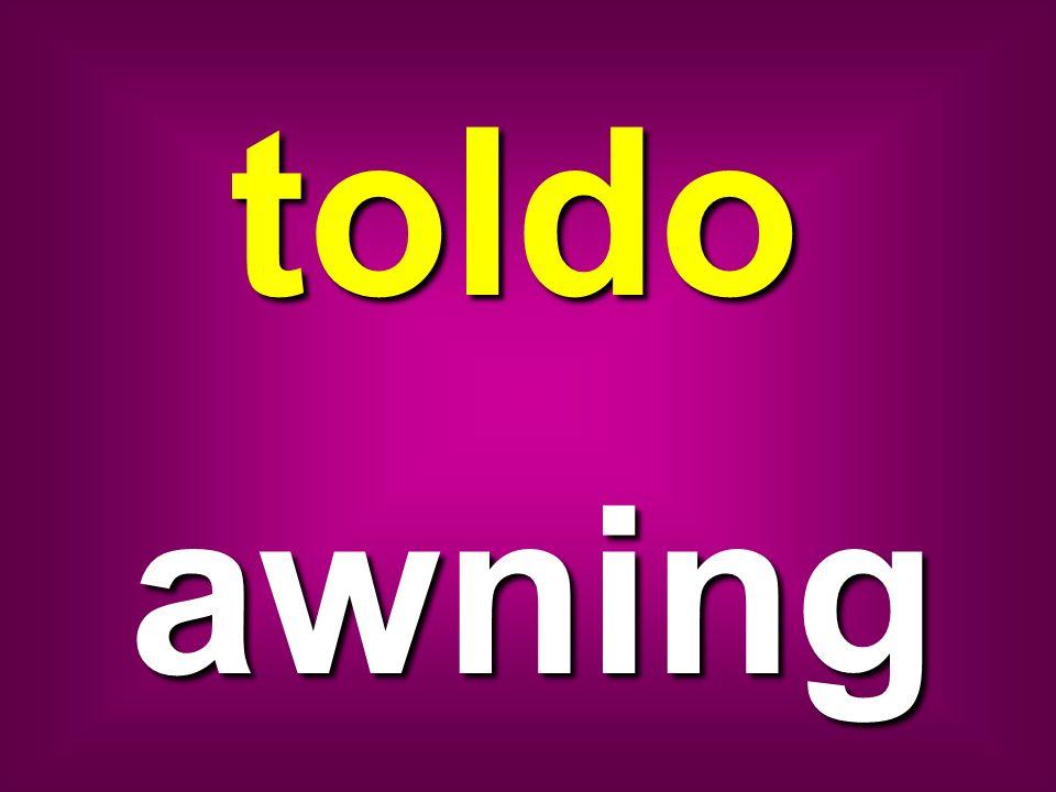 toldo awning
