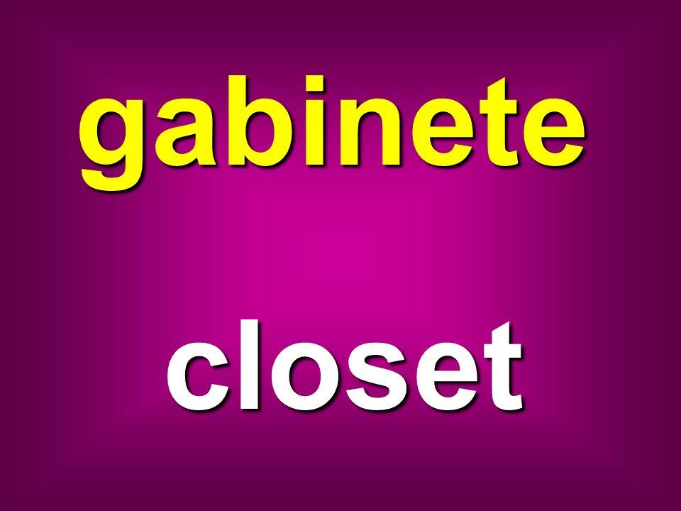 gabinete closet