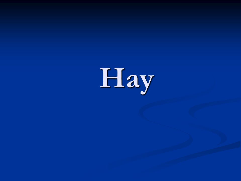 The verb form hay has two meanings: there is there is there are there are