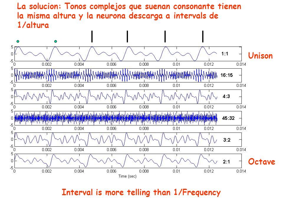 Interval is more telling than 1/Frequency Unison Octave La solucion: Tonos complejos que suenan consonante tienen la misma altura y la neurona descarga a intervals de 1/altura