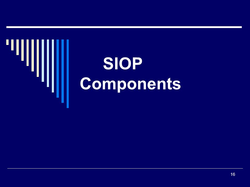 16 SIOP Components